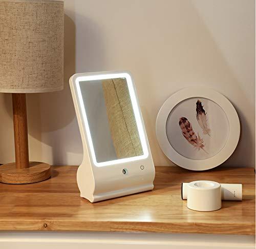 Preisvergleich Produktbild Zwei-in-einem-tragbare LED Kosmetik Kosmetikspiegel mit Nebel Sprayer Led Nachtlicht Home Decor wiederaufladbare Lampe