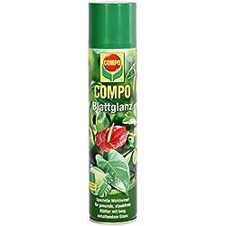 COMPO Blattglanz für alle Grünpflanzen, Sprühflasche, 300 ml