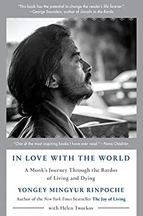 In Love With The World A Monk S Journey Through The Bardos