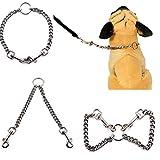 TINGSU Hundeleine aus Edelstahl mit Doppelköpfig, Schlangenkette