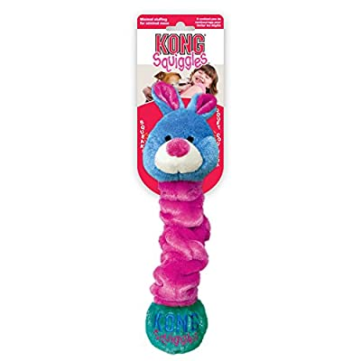 KONG Squiggles Dog Toy - Blue