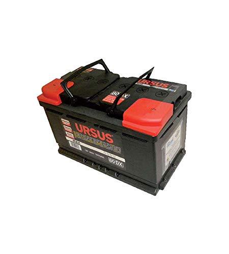 Batteria Auto Ursus 80 Ah Dx