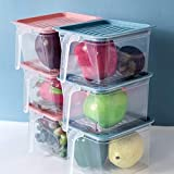 FLYNGO Plastic Storage Containers - 1100 ml, Set of 6, Transparent