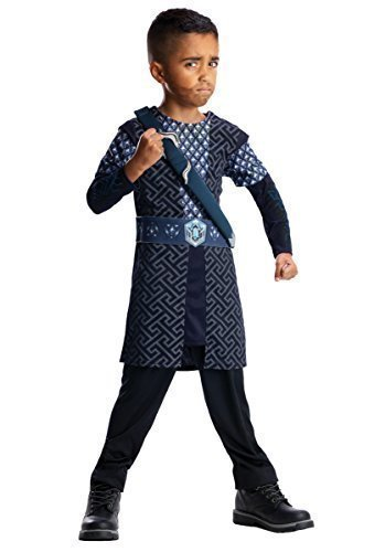Offizielles Boys 'Der Hobbit-Thorin 'Book-Tage-Woche Kostüm Outfit, 3-8 (Kind Thorin Hobbit Kostüme)