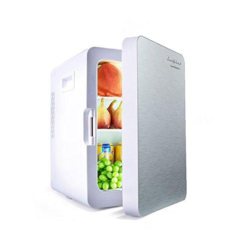 LT&NT Réfrigérateur de Voiture de l. c, 12V/24V/220V-240V Réfrigérateur électrique, Voiture à la Maison à Double Usage Boîte Réfrigérée/Isolée, congélateur de Voiture portative, Argent