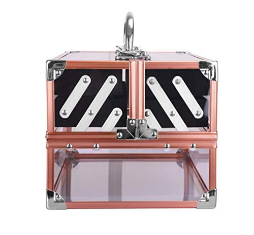 Tragbare Großraumtransparente Kosmetik Beauty Tools Aluminiumkosmetik Mehrschicht-Layer-Box