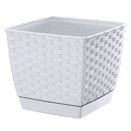 Pot de fleurs rectangulaire avec soucoupe Effet rotin blanc 14 cm plastique résistant aux intempéries