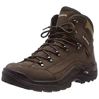 LOWA Boots Men's Renegade GTX M Hiking Boots