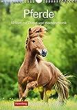 Pferde - Kalender 2019: Wochenplaner, 53 Blatt mit Zitaten und Wochenchronik