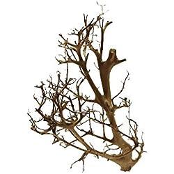 Tantora Driftwood Treibholz Bonsai Aquarium für Garnelen und Krebse geeignet