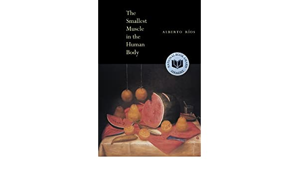 The Smallest Muscle in the Human Body: Amazon.de: Alberto Ríos ...