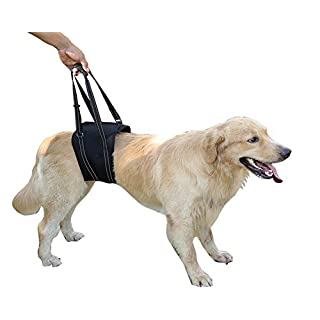 Dog Lift Harness Sling ACL Brace Limping Help Up Aid Veterinarian Approved for Cruciate Ligament Support,Canine Arthritis,Rehabilitation,Poor Stability,Joint Injuries,Mobility and Recovery - Black - M