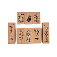 Cliocoo 8pcs Plants Rubber Stamp Set, Eucalyptus, Daisy, Fern, Gypsophila, Cotton Flower, M-73