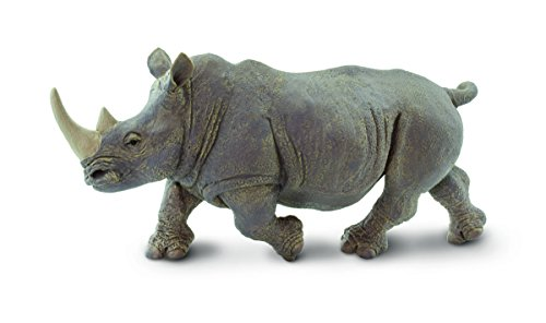 (Safari Nashorn)