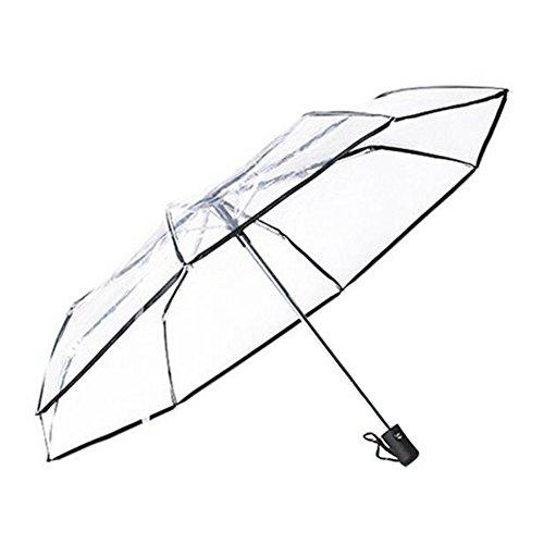 Black Temptation Automatikschirm Reise Folding Umbrella Winddichtes Transparente Regenschirm -