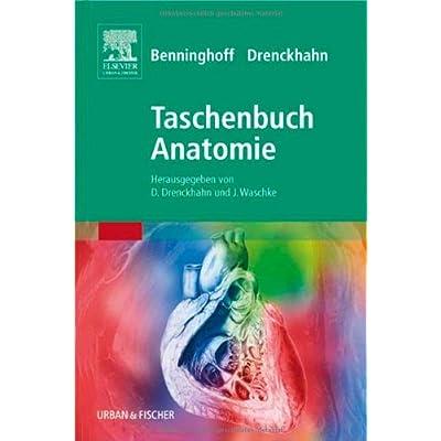 PDF] Benninghoff Taschenbuch Anatomie KOSTENLOS DOWNLOAD - Bücher ...