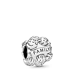 Pandora Silber Charm Familienliebe Family Love 791039