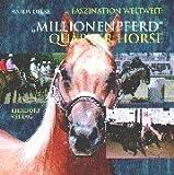Millionenpferd Quarter Horse.