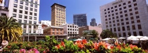 The Poster Corp Panoramic Images - Buildings in a city Union Square San Francisco California USA Photo Print (45,72 x 17,78 cm)