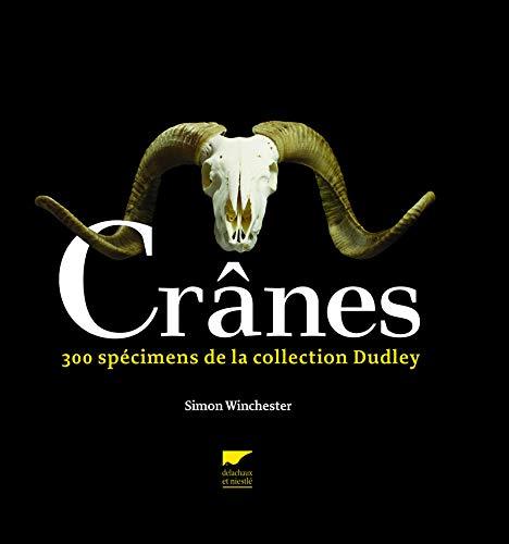 Crânes : 300 pièces de la collection Dudley