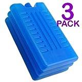 Ghiaccio Sintetico per Borse-frigo, Confezione da 3 o 6 Pezzi, per Tenere al Fresco Alimenti o Bevande, Pack of 3