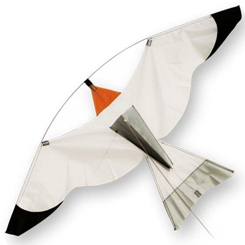 argento-uccello-aquilone-con-un-libero-linea-rig-ideale-per-volo-da-una-bandiera-telescopico