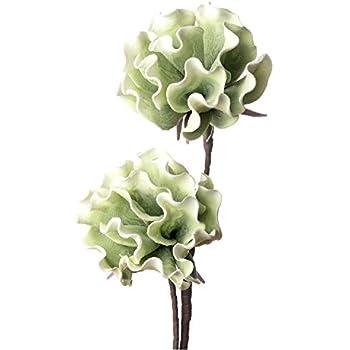 LOca Nera 1P110 Salix CAPREA in Eva-POLIETILENE ESPANSO 115h Fiore Artificiale