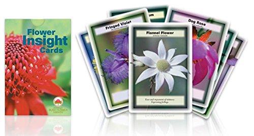 flower-insight-cards-carte-fiori-australiani-originali