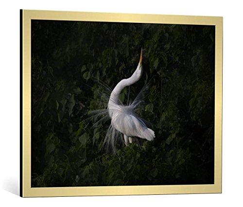 kunst für alle Bild mit Bilder-Rahmen: Phillip Chang The Call - dekorativer Kunstdruck, hochwertig gerahmt, 85x65 cm, Gold gebürstet