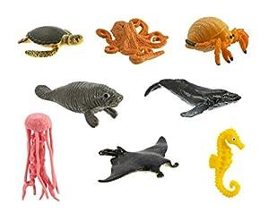 Sea Life - Pack Divertido