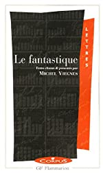 Le fantastique de Michel Viegnes