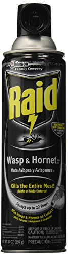 johnson-diversey-wasp-hornet-killer-14-oz-aerosol-can