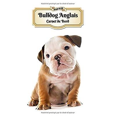 2020 Bulldog Anglais Carnet de Bord: Chiot ou Chien | 139 Pages | 12 Mois | Format A4 | Agenda | Journalier | Planificateur | Semainier Simple | Calendrier | Organizer