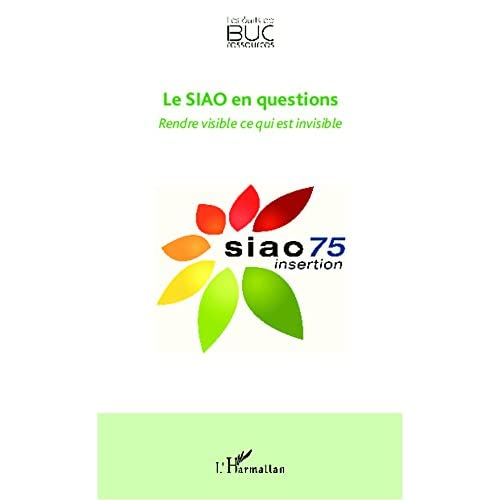 Le SIAO en questions: Rendre visible ce qui est invisible (Les écrits de BUC Ressources)
