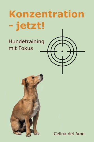 Konzentration - jetzt!: Hundetraining mit Fokus
