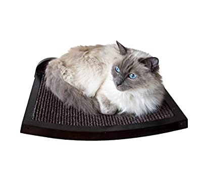 Cat Shelf modern curved wood wall mounted perch - an elevated cat bed your cat will love immediately! - low-cost UK light store.