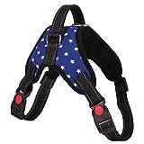 DZH Enjoy Hundegeschirr Dogs Safety Walking Verstellbarer Vast Harness Inklusive Leash Strap für große mittelgroße Hunde