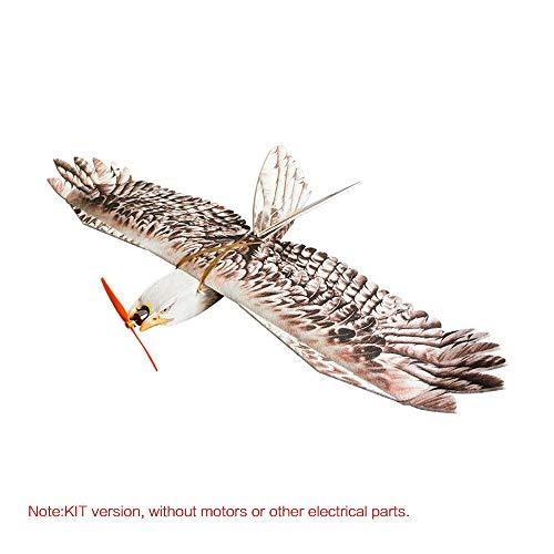 Ferngesteuertes Flugzeug, mit dem Neue Kinder spie DW Hobby Biomimetic Eagle EVP Mini Langzeitflieger 1200mm Spannweite RC Flugzeug KIT (Rc-flugzeug Einen Bauen Sie)