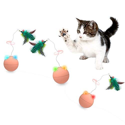 Nice Dream Interaktives Spielzeug für Katzen, Automatisches Selbst Drehen Cat Bälle Spielzeug mit Feder und Pompom, Tumbler Spielzeug Spaß Chaser für Katzen und Kätzchen,1 Stück (Orange)