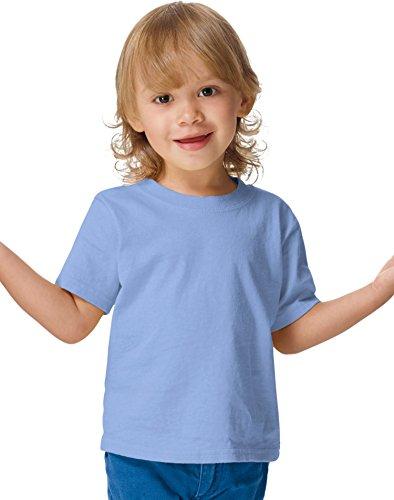 Hanes ComfortSoft Crewneck Toddler T-Shirt, Light Blue, 2T (Hanes Toddler-shirts)