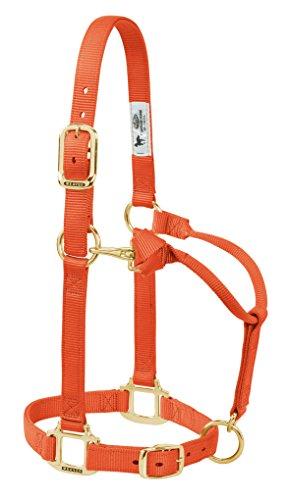 Weaver Leder Original Verstellbare Nylon Pferd Halfter, 35-7035-OR, Orange, 1 Inches Average Horse