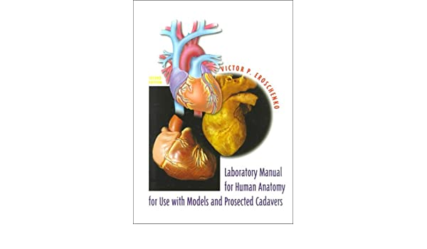 Buy Laboratory Manual For Human Anatomy With Cadavers Book Online At