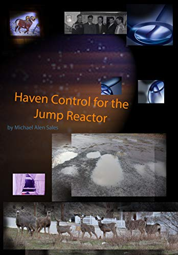 Haven Control for the Jump Reactor: Real Darn Boy Grows Up (Tandem Recruiters Book 1) (English Edition) -