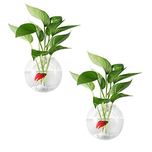ComSaf Transparente Glasvase Blumenvase 12CM Glas Packung mit 2, Wandbehang Pflanzgefäße Wand aufhängen Pflanztopf BlumentöpfeWandtopfHaus und Büro Wand Ornament Geburtstag