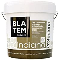 INDIANA ANTIMOHO PROFESIONAL PLASTICA VINILICA BLANCO MATE (4 LTS)