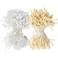 F Fityle 640 Piezas de Estambres Artificiales de Cabeza de Flor Doble Pistils para Ramos de Boda