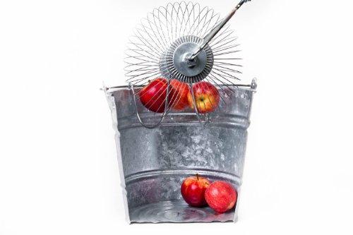 Pickuptheapples – Apfelsammler - 3
