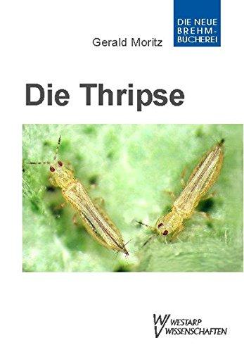 Thripse - Fransenflügler, Thysanoptera: Pflanzensaftsaugende Insekten Bd. 1