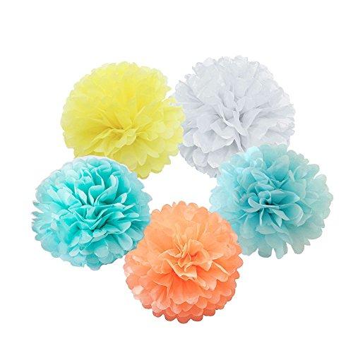 mpom 10er 20cm/25cm Mixed DIY Papier Blumen PomPoms Zum Aufhängen Seidenpapier schöne Dekor für Geburtstag Hochzeitsfest Basteln Babyshower Party Baby-Duschen Wohnungdeko (Farbe-2) ()