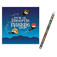 Unique Industries and Danilo Harry Potter Favourite Muggle Birthday Card with a Harry Potter Pencil Gift